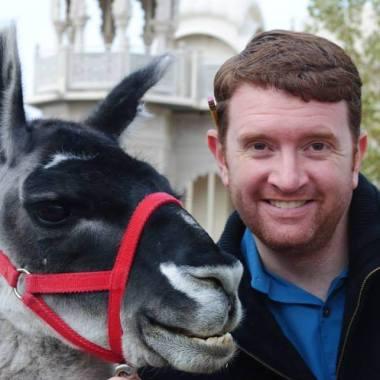 llama profile pic